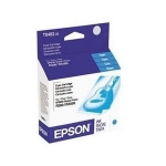 Epson T048520-S R300/RX500 Light Cyan