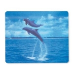 Manhattan 3D Dolphin Mouse Pad