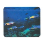 Manhattan 3D Fish Mouse Pad