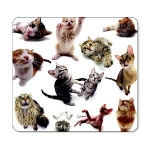 Allsop Cats Mouse Pad