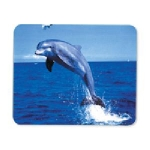 Manhattan Dolphin Mouse Pad