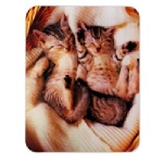 Manhattan Kitten Mouse Pad