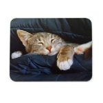 Manhattan Sleepy Cat Mouse Pad